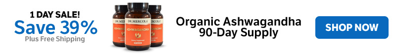 Save 39% on an Organic Ashwagandha 90-Day Supply
