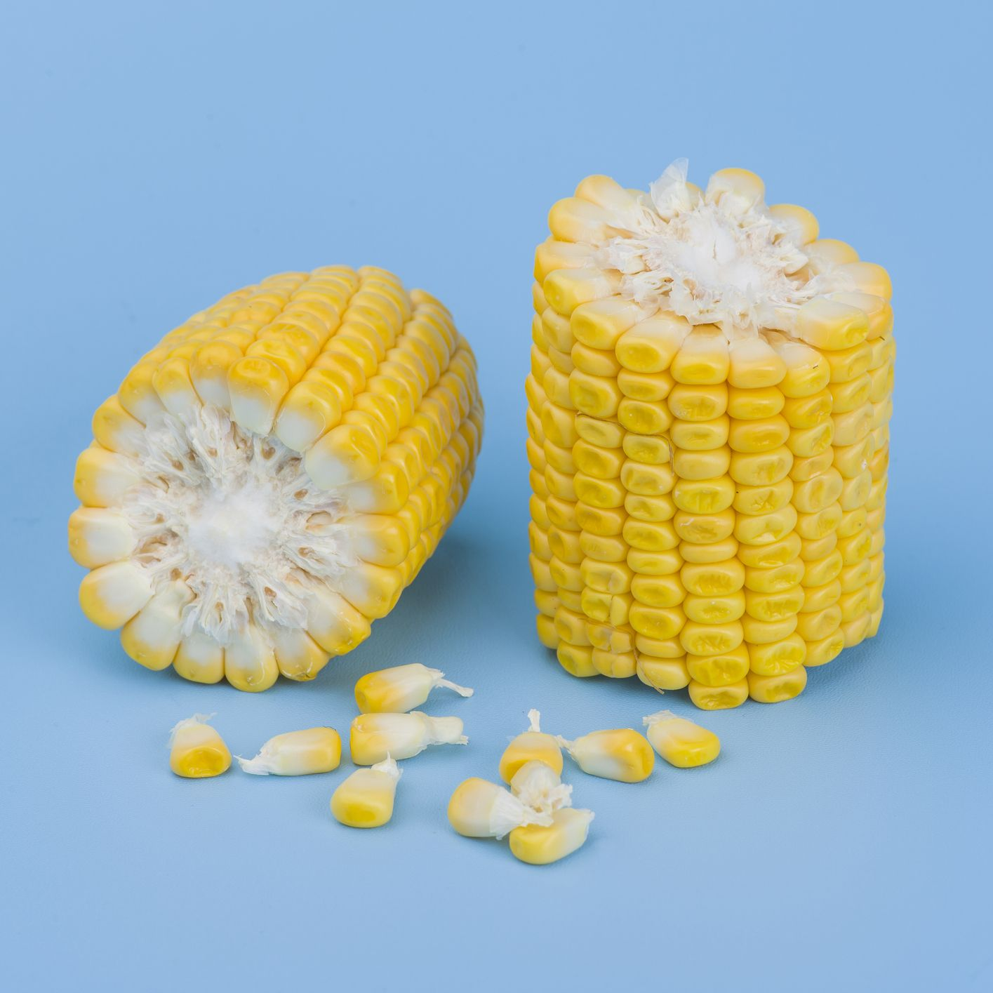 Close-Up Of Corn Against Blue Background