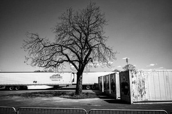 Refrigerated trucks were used as mobile morgues on Randall's Island in New York.